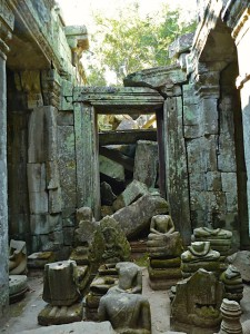 Angkor - Temple de Ta Prohm